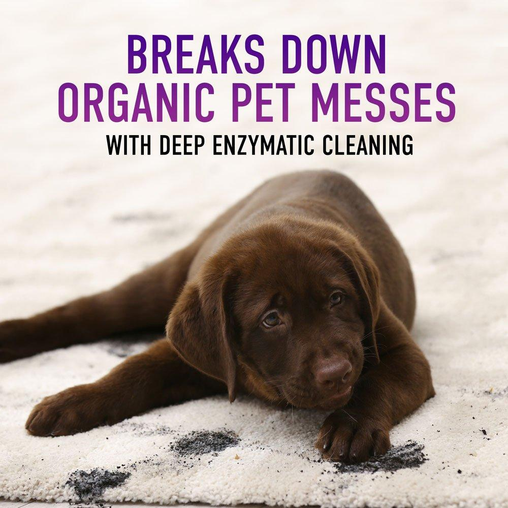 Paws & Claws Carpet Cleaning Formula 128oz3