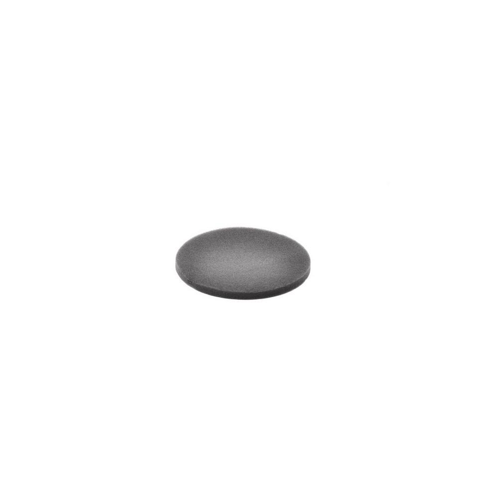 Filter, Dirt Cup-Foam - 440001813