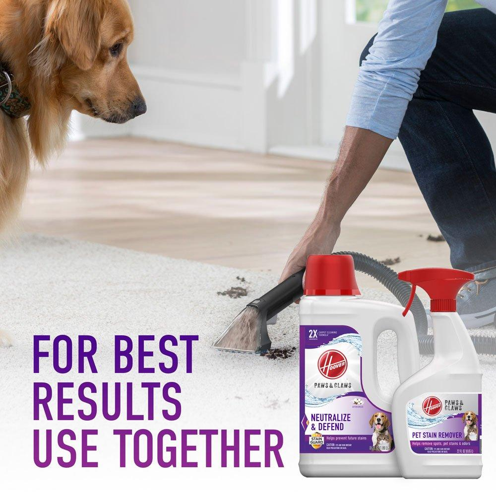 Paws & Claws Stain Remover 22oz6