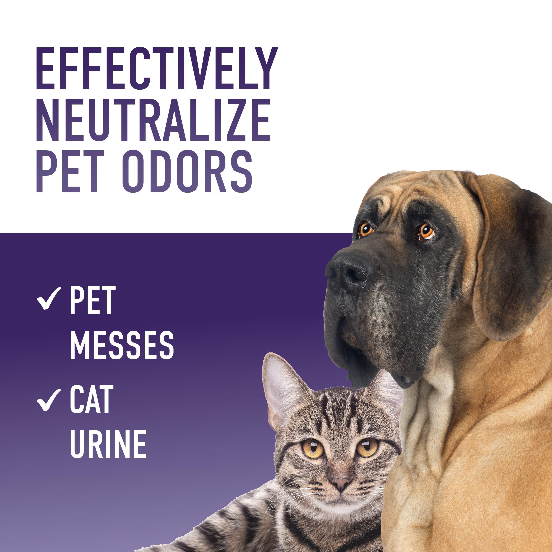 Odor Neutralizer Enhancer Bundle 16 oz (2-pack)4
