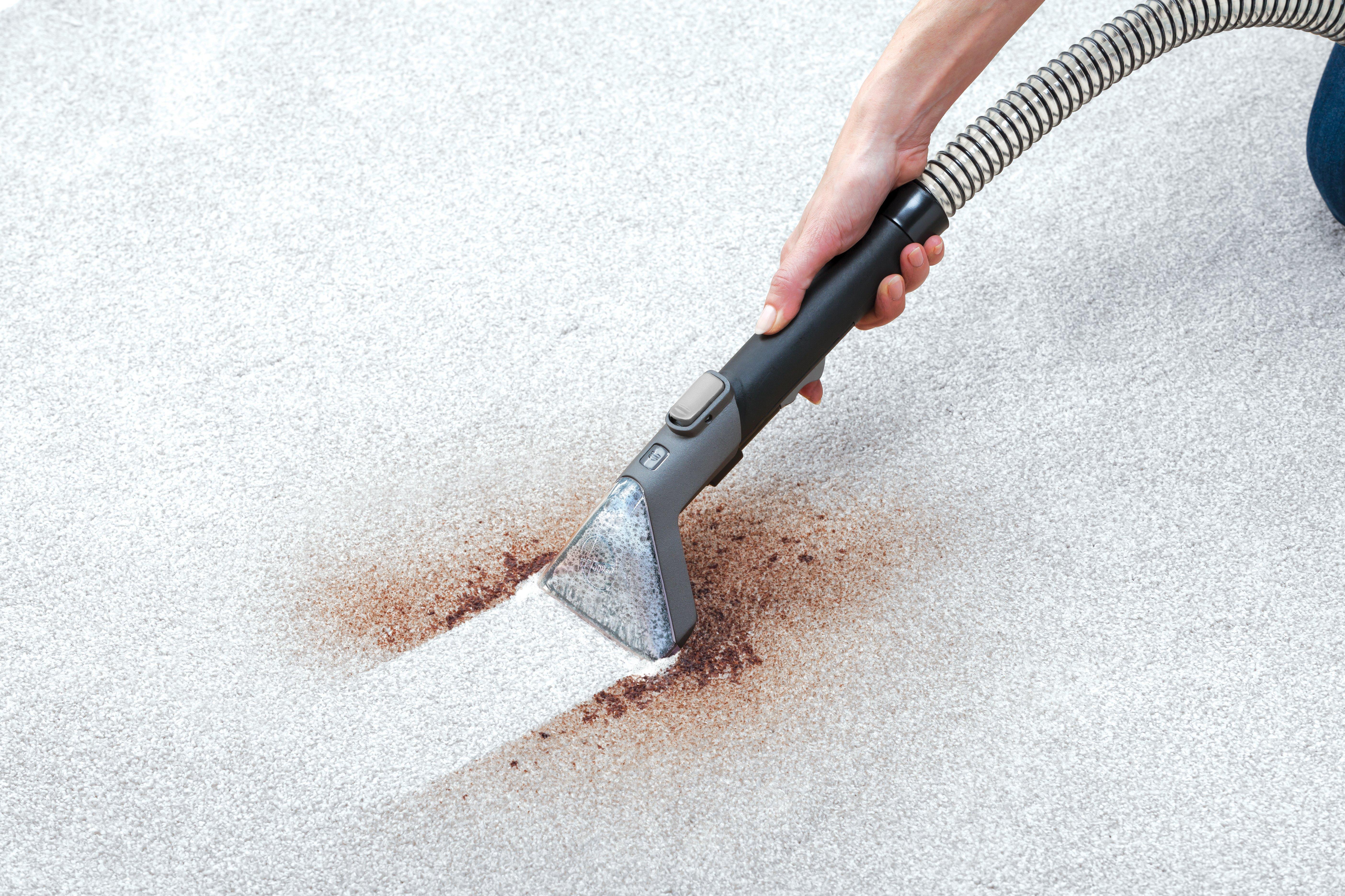 Spotless Deluxe Portable Carpet & Upholstery Cleaner7