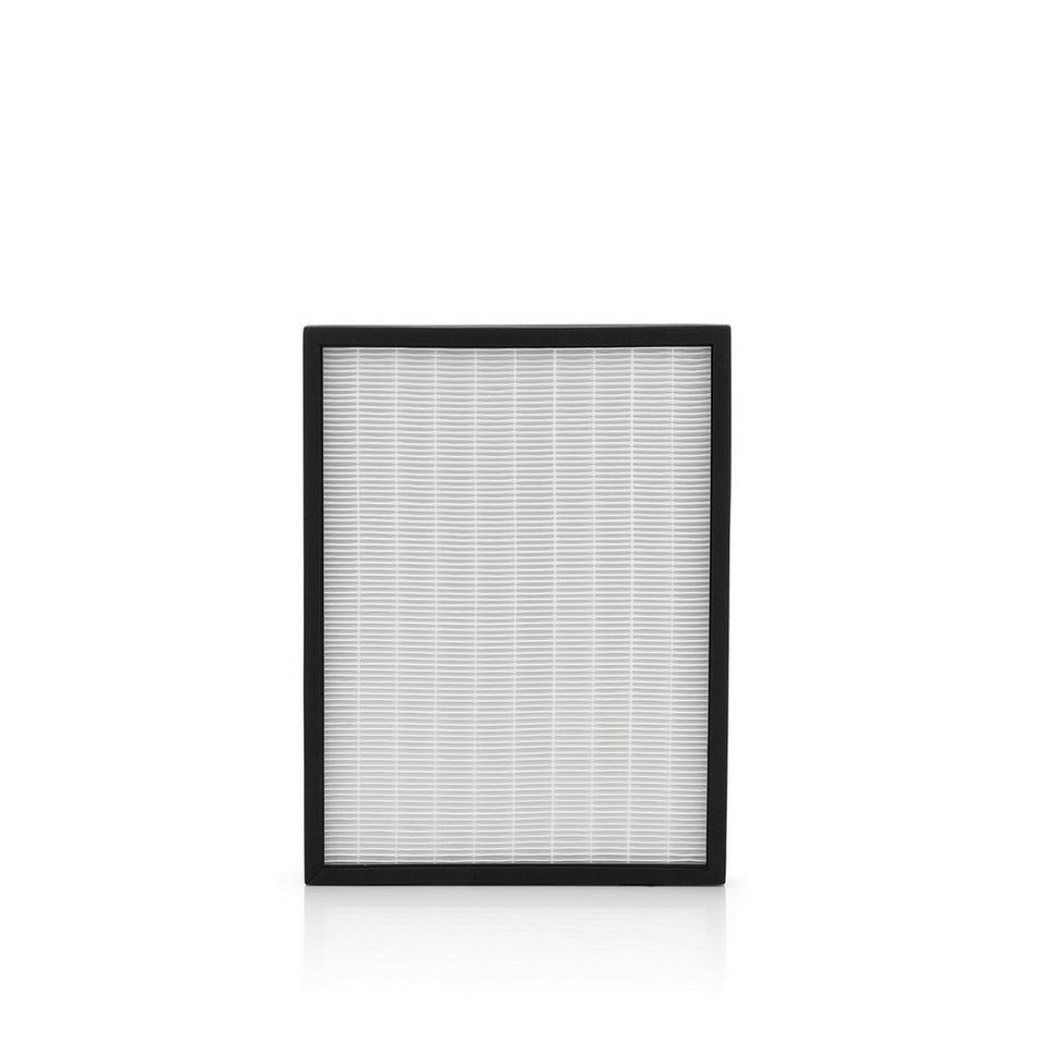 Replacement Filter & Odor Filter for WH10301 - WH00301PC